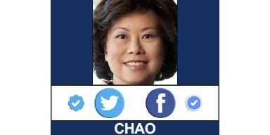 Chao Social